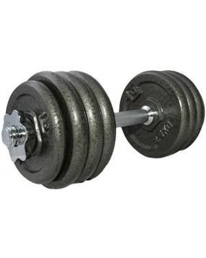 Гантель LiveUp наборная железная 20 кг LS2311-20